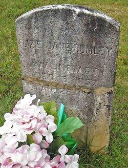 Eliza Jane <i>Rumley</i> Lineback