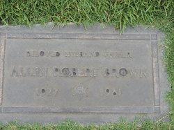 Allen Robert Brown