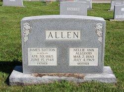 Nellie Ann <i>Algood</i> Allen