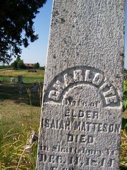Charlotte <i>Harpending</i> Matteson