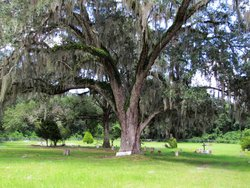 Adamsville Community Cemetery