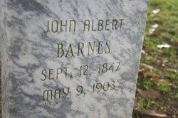 John Albert Barnes