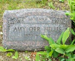 Amy Louise <i>Orr</i> Hillis