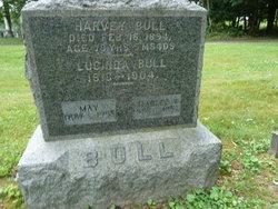Lucinda <i>Towle</i> Bull