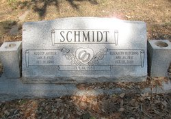 Elizabeth <i>Hutchins</i> Schmidt