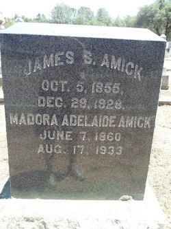James S Amick
