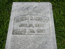 Albert N Abbott