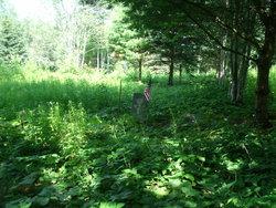 Old Birchland Cemetery