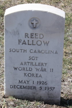Reed Fallow