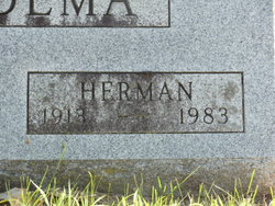 Herman Woudema