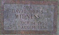 David Orris Widness