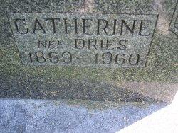 Catherine <i>Dries</i> Feltes