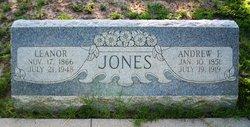 Andrew F. Jones