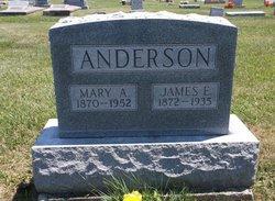 Mary Alice <i>Parrish</i> Anderson