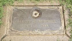 Oakley Elmer Stubb Mitchell