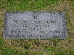Peter J Anthony
