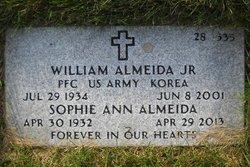 William Almeida, Jr