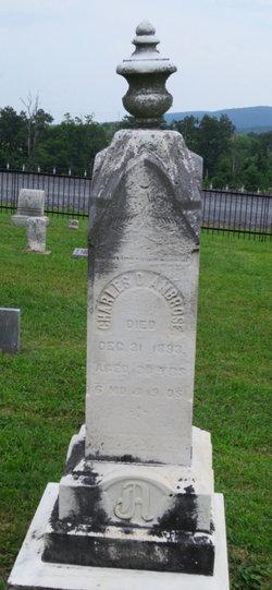Charles D. Ambrose
