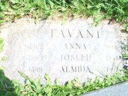 Joseph Guiseppe Tavani