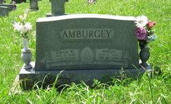 Hiram Wesley Amburgey