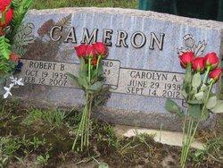 Carolyn Ann <i>Cope</i> Cameron