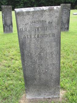Elizabeth Watkins <i>Holiday</i> Alexander