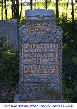 Loury C. Borah