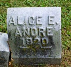 Alice E Andre