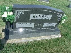 James S Bender