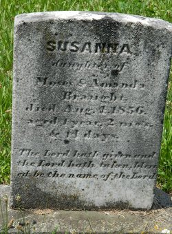 Susanna Braught