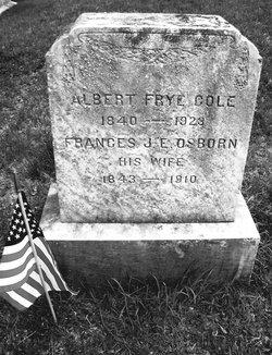 Pvt Albert Frye Cole