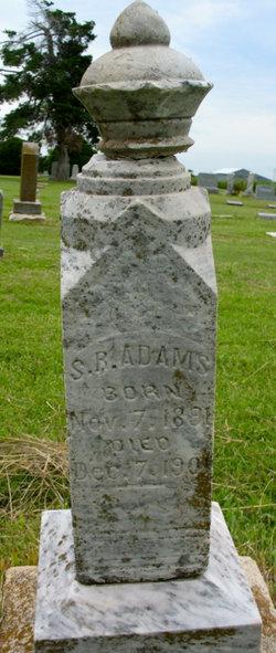 Sidney R Adams