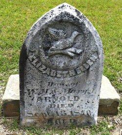 Elizabeth Ellen Arnold