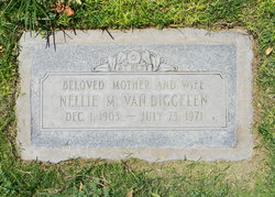 Nellie M VanDiggelen