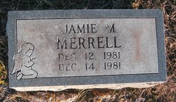 Jamie M Merrell