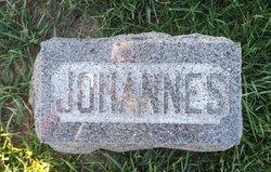 Johannes J Muhs