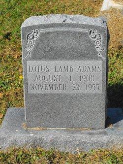 Lotus <i>Lamb</i> Adams