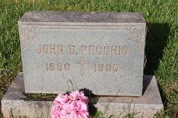 John B. Pecchio