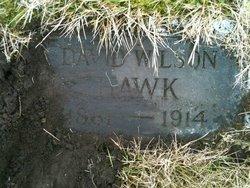 David Wilson Hawk