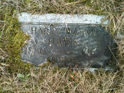 Harry Wayne Hawk