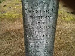 Chester Murray