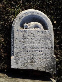Annie Rosa Bauer