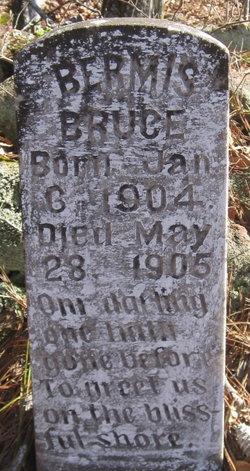 Bermis Bruce