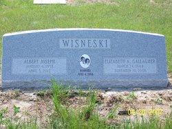 Albert Joseph Al Wisneski