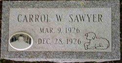 Carrol W. Sawyer