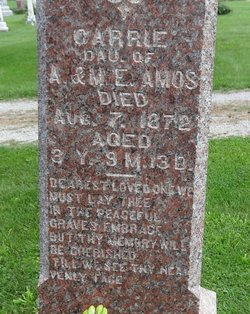 Carrie Amos