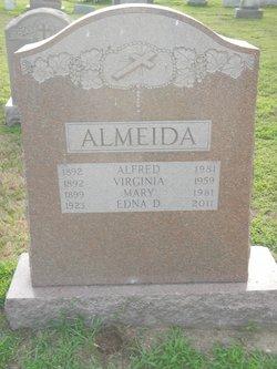 Edna D Almeida