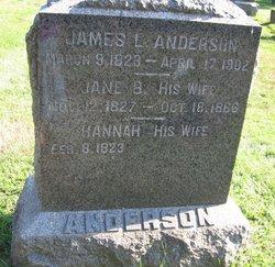 Betsey Jane <i>Wilkinson</i> Anderson