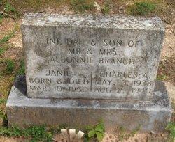Charles A. Branch