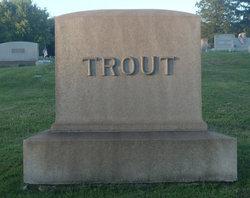 David P Trout